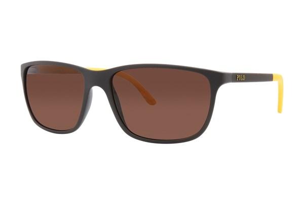 Polo PH4092 - Buy Eyeglass Frames and Prescription Eyeglasses Online