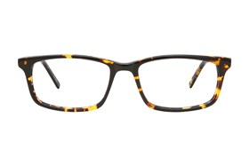 Eight To Eighty Eyewear Brice Tortoise