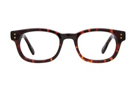 Affordable Designs Owen Tortoise