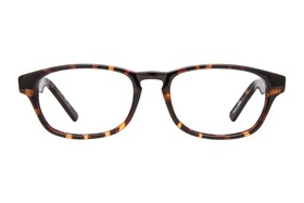 Affordable Designs Ted Tortoise