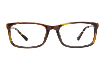 Eight To Eighty Eyewear Brian Tortoise