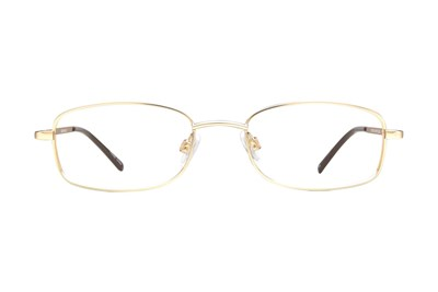 Arlington Eyewear AR1042 Gold