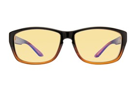 Gunnar Micron Computer Glasses Brown
