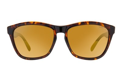 1d1e19bf33 Discount Mens Bolle Sunglasses