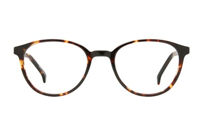 Eight To Eighty Eyewear Downtown Tortoise