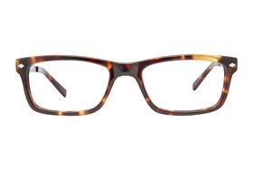 TapouT TAP845 Tortoise