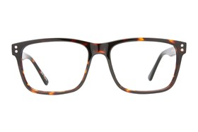 Eight To Eighty Eyewear Carlos Tortoise